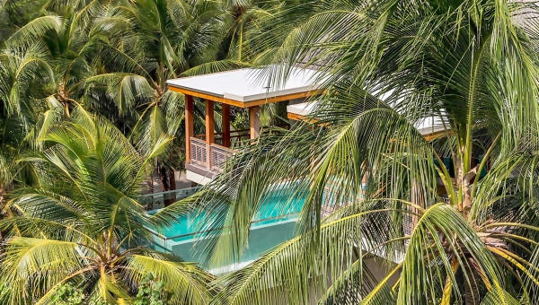 Amilla Fushi Elevates Spa Retreat Concept To Fresh Heights With New Wellness Tree Houses By Bodyism