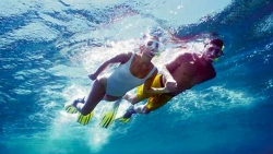 GUIDED SNORKELLING