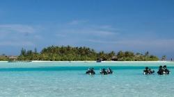 Underwater Kids Paradise
