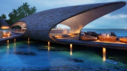 The Whale Bar
