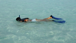 Watersports Activities and Excursions