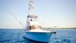 Big game fishing charters