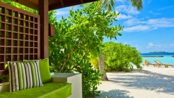 Beachfront Deluxe Bungalow