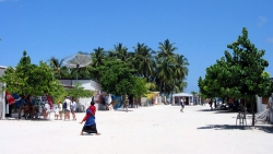 Local Island Visit by Touring